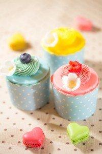 Harlan's Cake Shop- cup cake